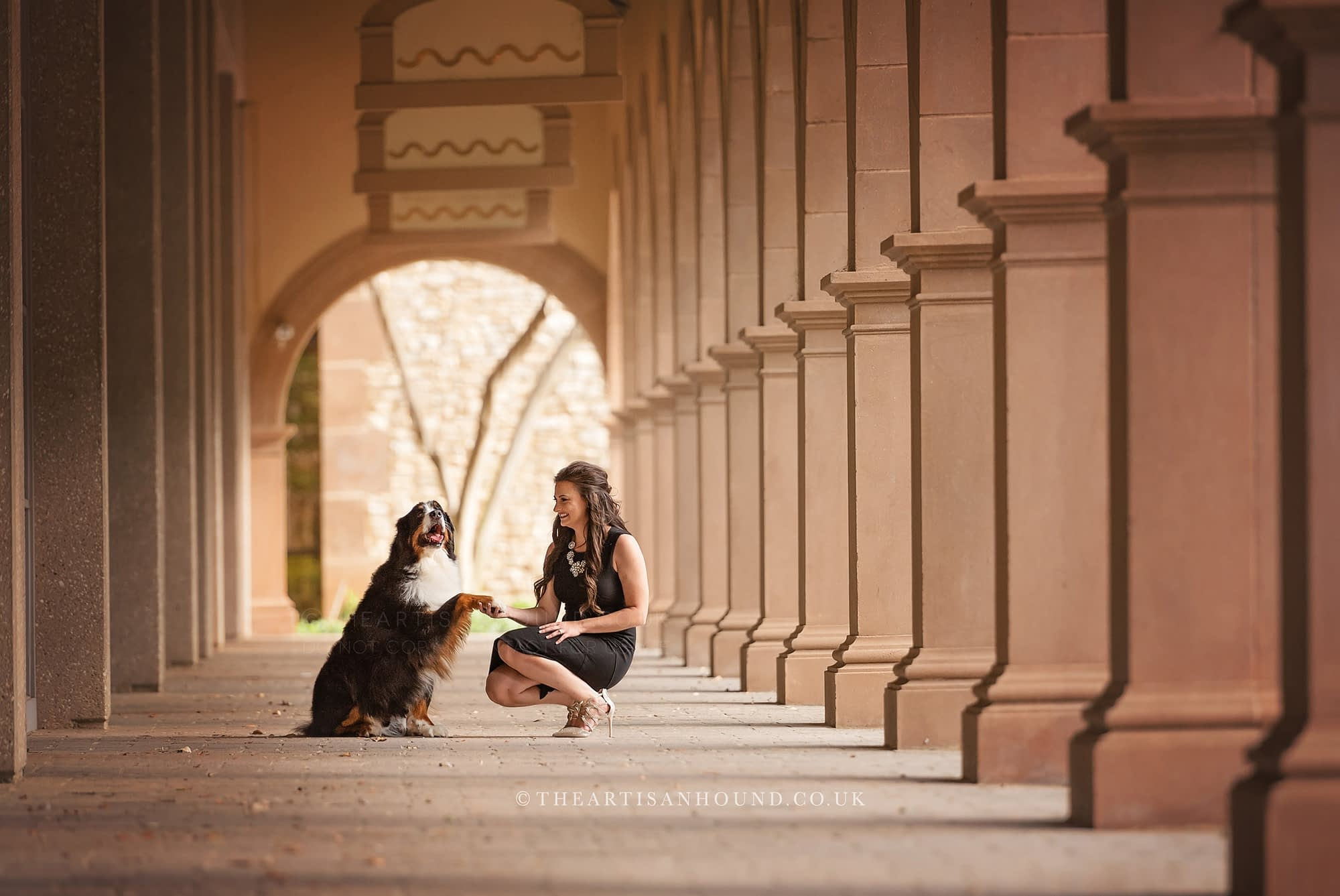 Dog giving paw to owner in urban walkway with columns