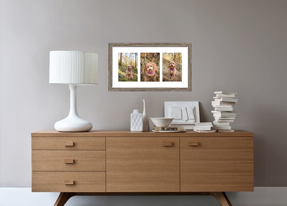 Framed triptych of cockapoo puppy above sideboard