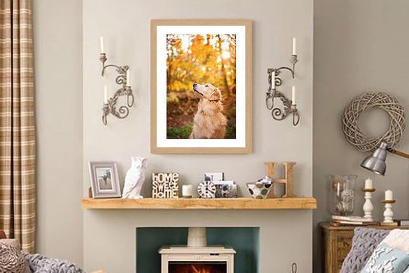 Framed print of Golden Retriever hanging above fireplace in living room