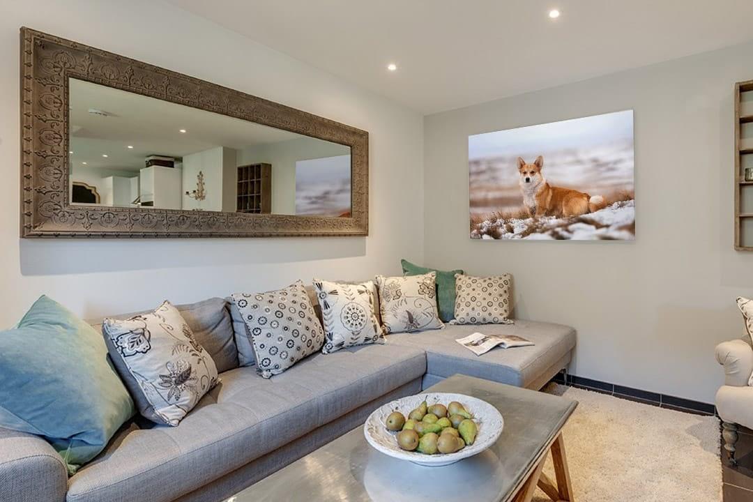 Acrylic print of corgi hanging on living room wall