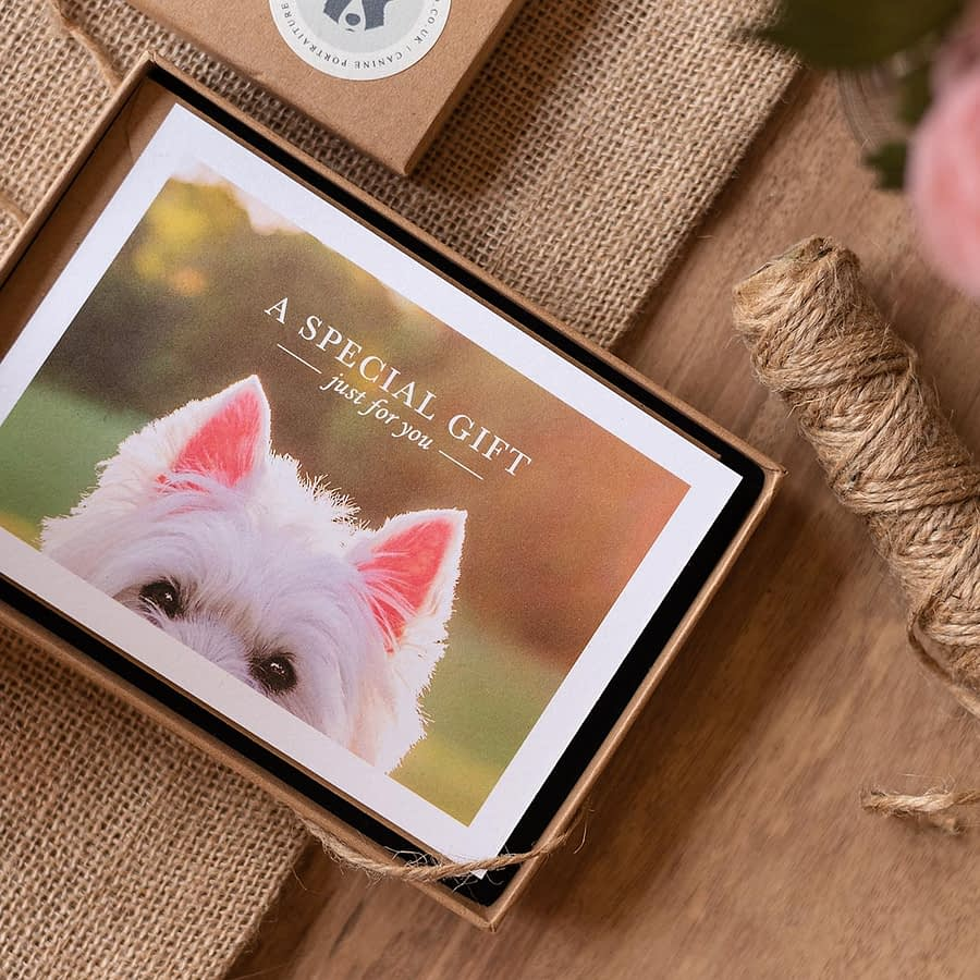 Dog photography gift certificate in box