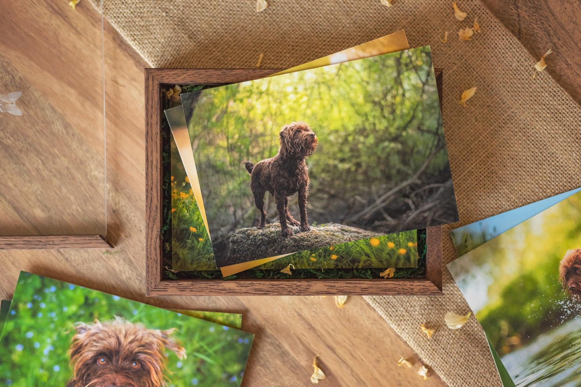 fine art prints in wooden box